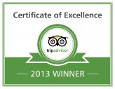 Auszeichung Certifcate of Excellence 2013